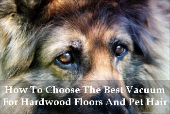 vacuums for hardwood floors and pet hair reviews
