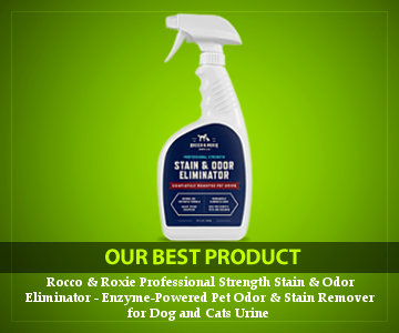 best carpet cleaner spray for set in stains reviews