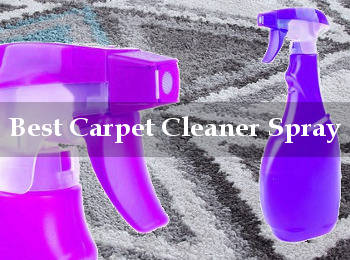 best carpet cleaner spray reviews