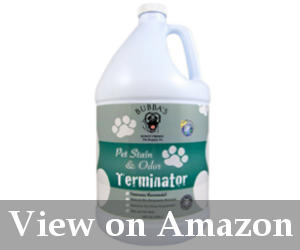 best carpet stain remover reviews