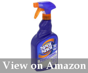 best spot carpet cleaner for pet stains reviews
