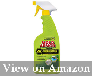best bathroom cleaner for mold and mildew reviews