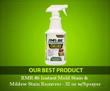best mold remover product reviews