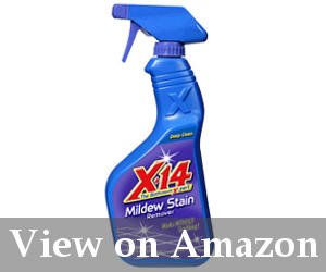 best mold remover spray reviews