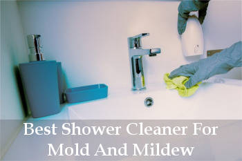 best shower cleaner for mold and mildew reviews
