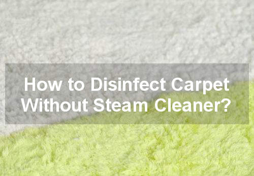 how to disinfect carpet without steam cleaner