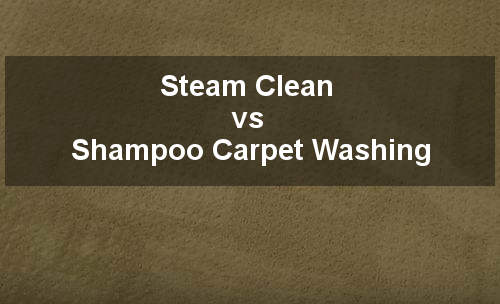steam clean vs shampoo carpet